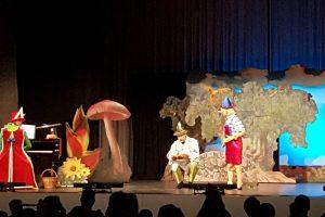 Pinocchio 2018 Bild 4